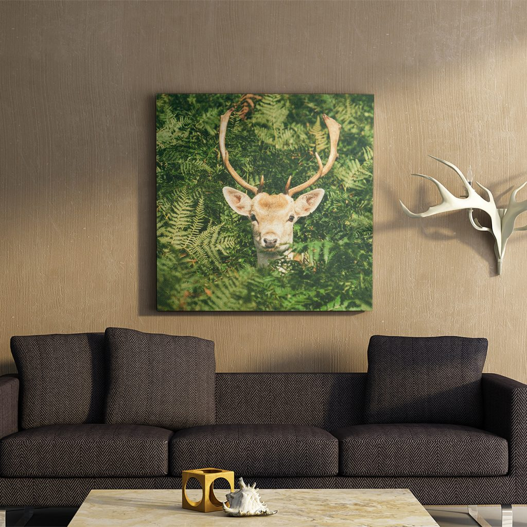 Deer Themed Living Room with Wall Art